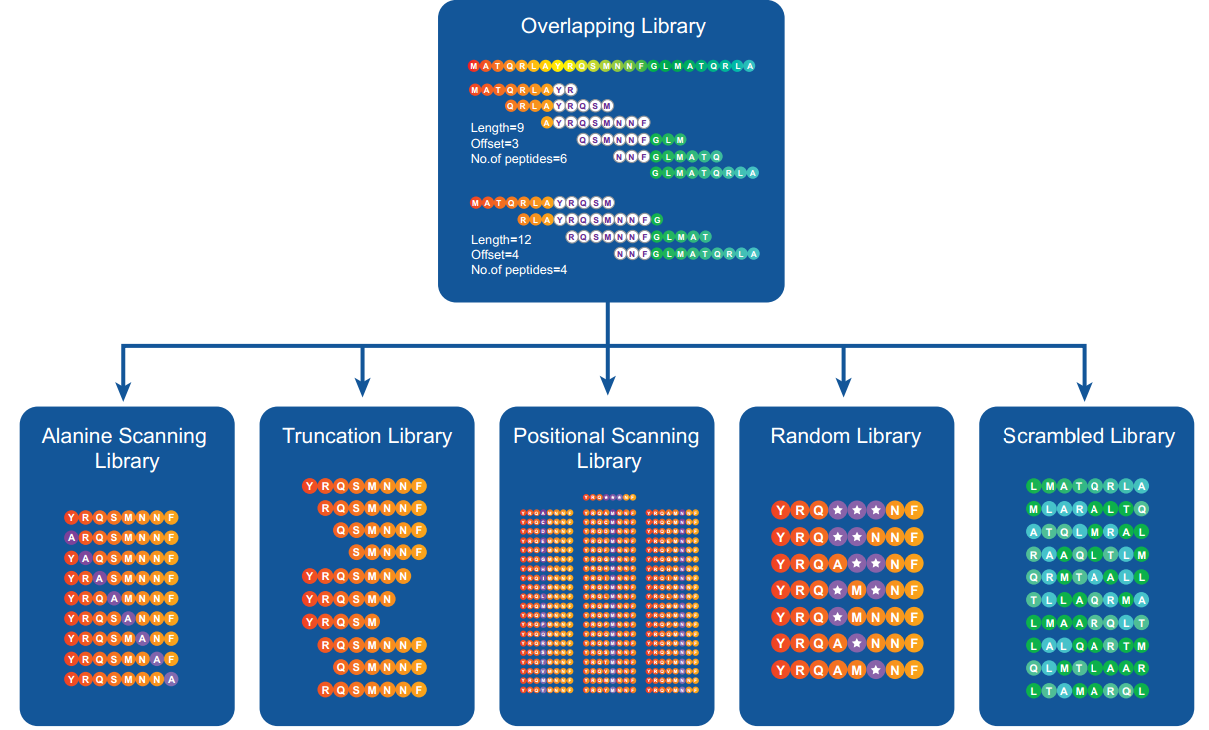 Peptide Library